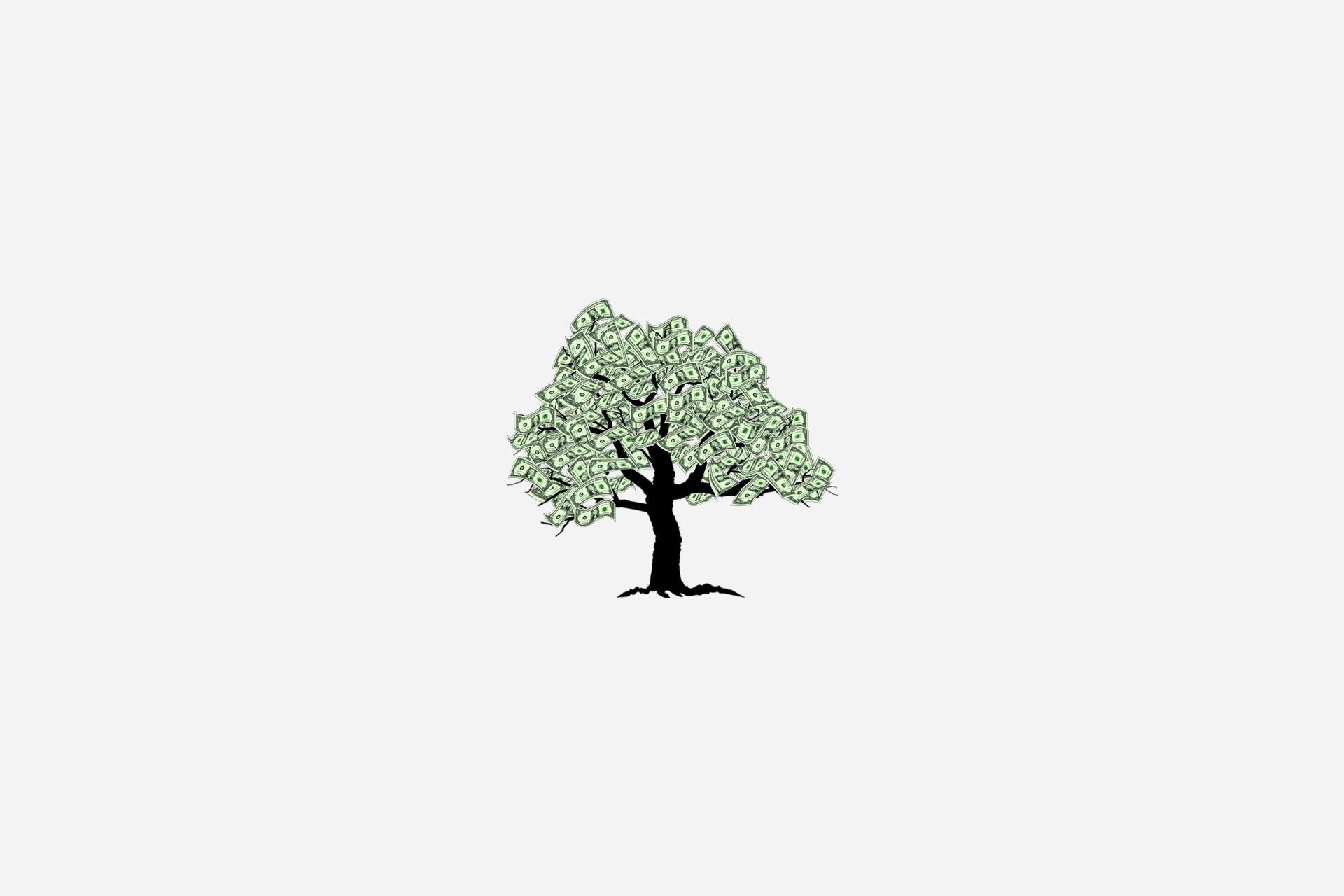 15 قانون پول, درخت پول